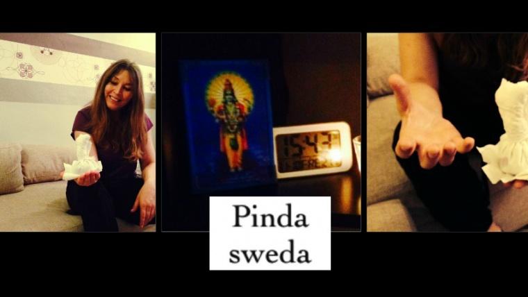 Pinda Sweda- last week's highlight!